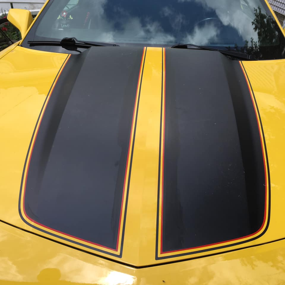 Pinstripes by Julie Fournier on Mustang